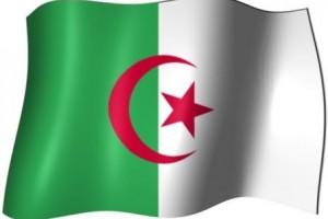 Marijuana in Algeria (Cephas)